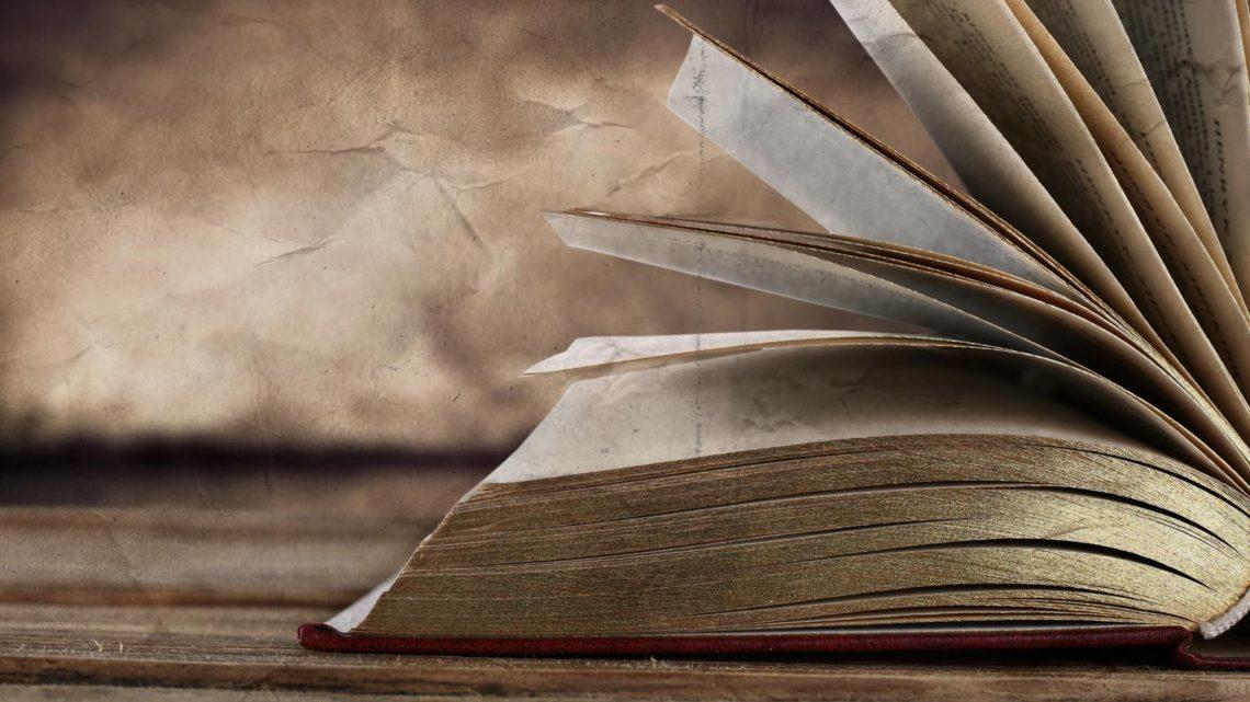 """Ilija Trojanow: """"Nach der Flucht"""". Lesung in der Zentralbibliothek Remscheid am 22. November 2018"""